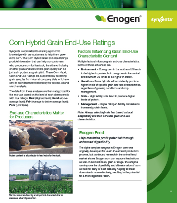 Enogen Corn Hybrid Grain End-Use Ratings Sheet