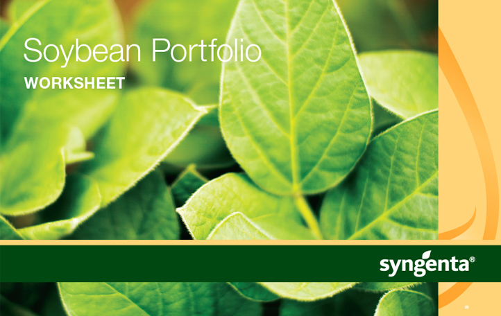 Soybean Portfolio Guide