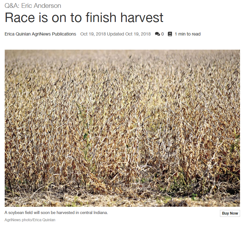 Screenshot of Race is on to finish harvest