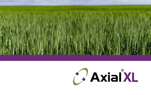 Axial XL