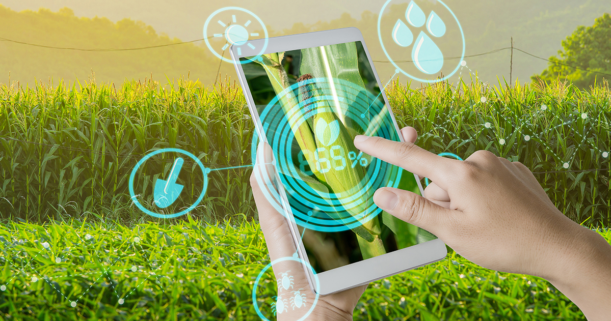 2019 Syngenta Crop Challenge in Analytics   Syngenta US