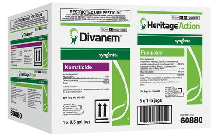 Divanem & Heritage Action Multipak