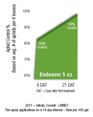 Endeavor Aphid Control