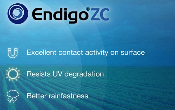 Endigo ZC Animation