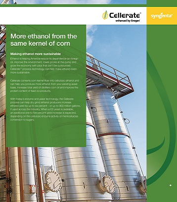Cellerate Brochure