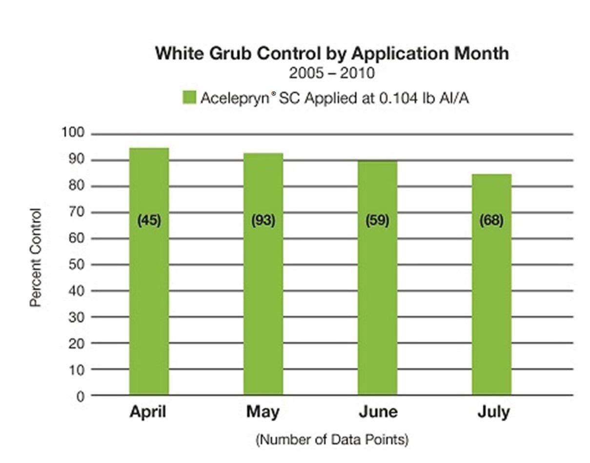 White Grub Control Acelepryn