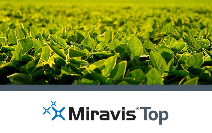 Miravis Top