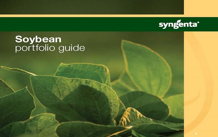 Soybean Portfolio Guide