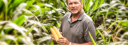 Syngenta Has a Winning Roster of Fungicides