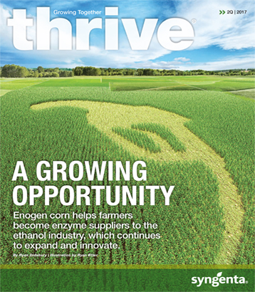 <em>THRIVE</em> A Growing Opportunity