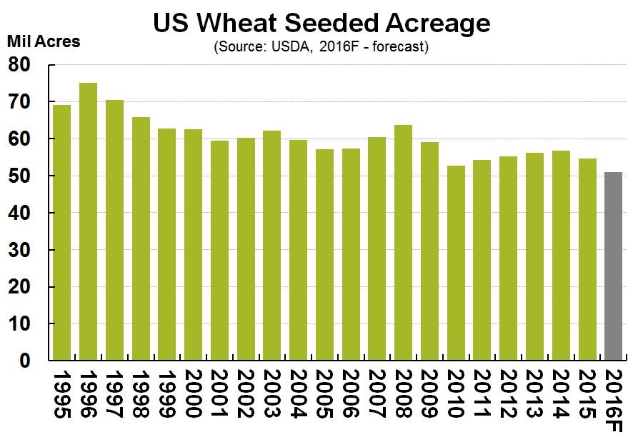 US wheat seeded acreage