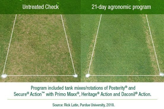 Agronomic Approach to Dollar Spot Control