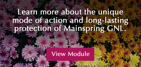 Mainspring GNL insecticide for plants