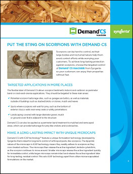 Demand CS Scorpion Information Sheet