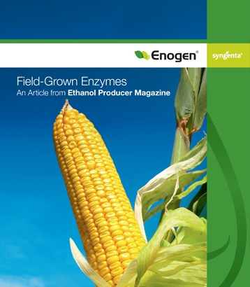 Field-Grown Enzymes