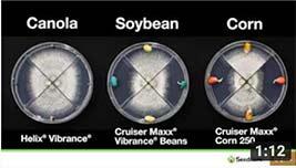 video thumbnail of La puissance du traitement de semences Vibrance