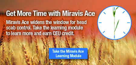 Miravis Ace Learning Module Banner