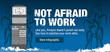 Not Afraid to Work Trivapro Infographic