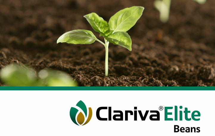 Clariva Elite Beans Seed Treatment
