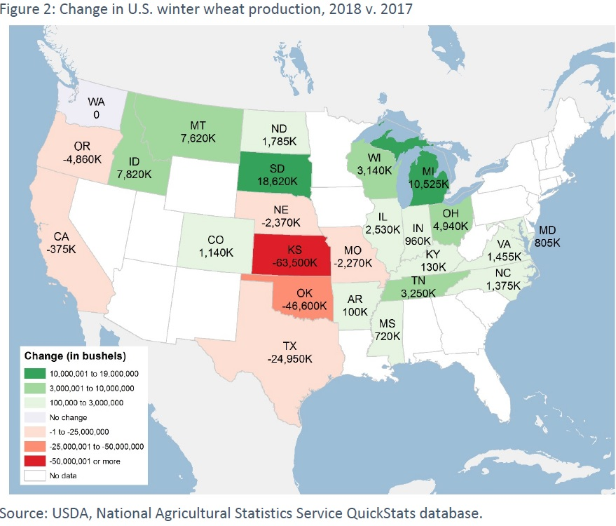 change in world wheat production